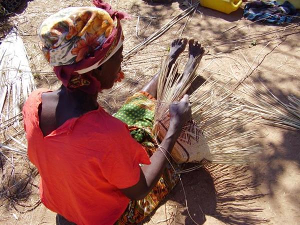 Zambia vever